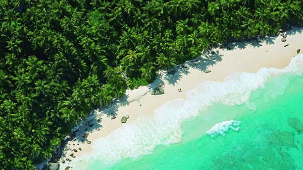 02.ジャングルに面したビーチを空撮した綺麗な写真壁紙画像