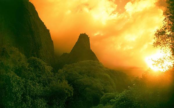 05.夕日に染まるジャングルを撮影した美しい写真壁紙画像