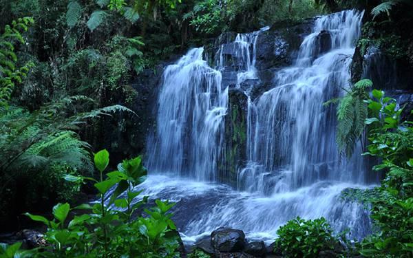 12.ジャングルの中を流れる滝を撮影した美しい写真壁紙画像