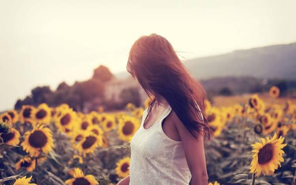02.ひまわり畑の女性を撮影した美しい写真壁紙画像