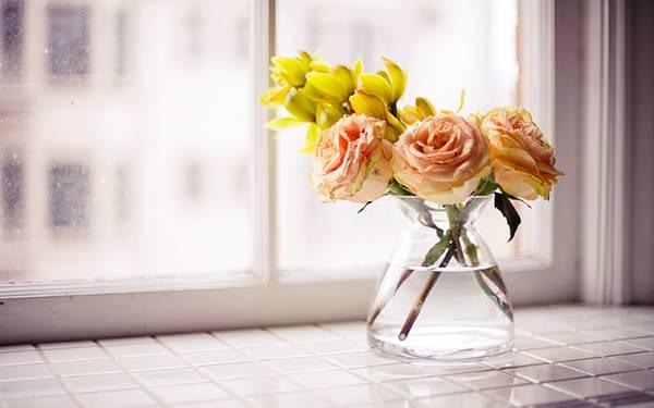 04.窓際に置いた花瓶に挿した花を撮影した美しい写真壁紙画像