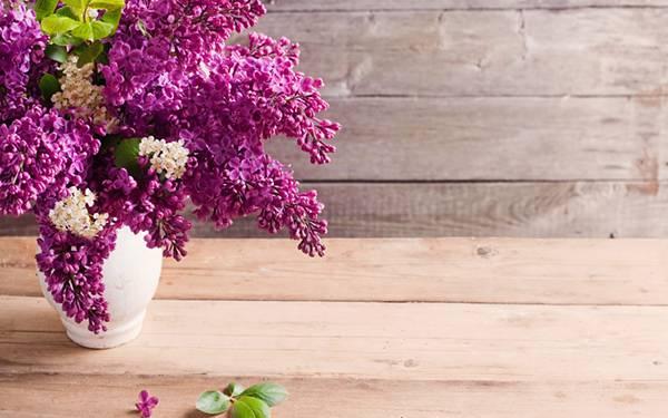 06.花瓶に挿したライラックの花を撮影した美しい写真壁紙画像