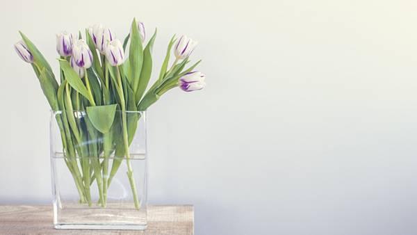 07.チューリップを挿した花瓶を撮影した透明感のある写真壁紙画像