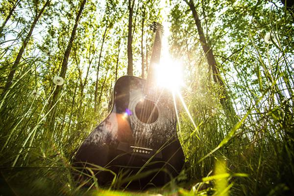 Black Guitar in Sunlight