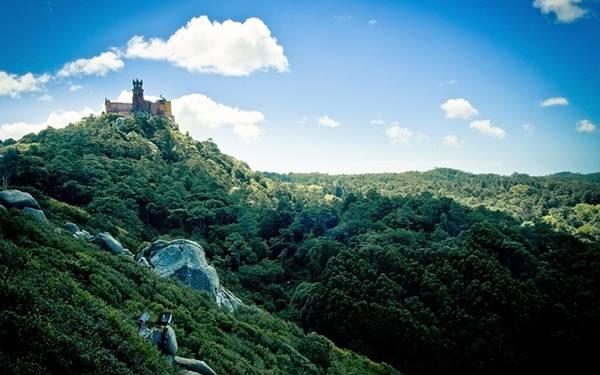 02.森の中に佇む古城を撮影した美しい写真壁紙画像