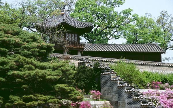 05.韓国のお寺を撮影した綺麗な写真壁紙画像