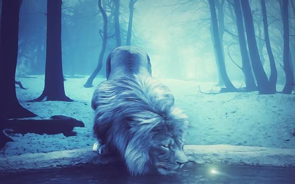 09.池の水を飲むライオンをブルーで描いた幻想的なイラスト壁紙画像