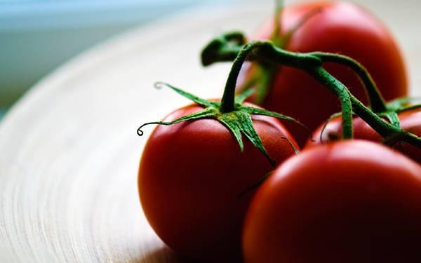 01.お皿の上のプチトマトを撮影した綺麗な写真壁紙画像