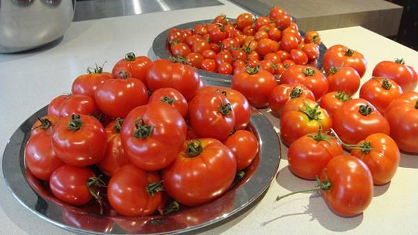 12.皿の上に積み重ねられたたっぷりのトマトの写真壁紙画像