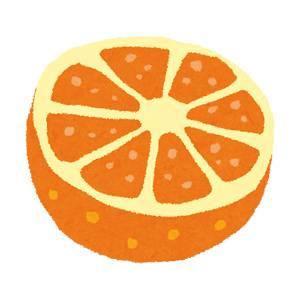 カットみかん・オレンジのイラスト(フルーツ)