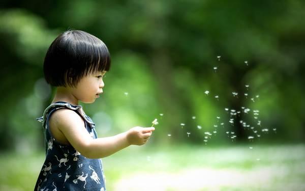 07.たんぽぽの綿毛を飛ばす子供を浅い被写界深度で撮影した写真壁紙