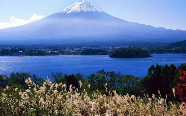 11.すすきと湖都富士山を撮影した雄大な写真壁紙画像