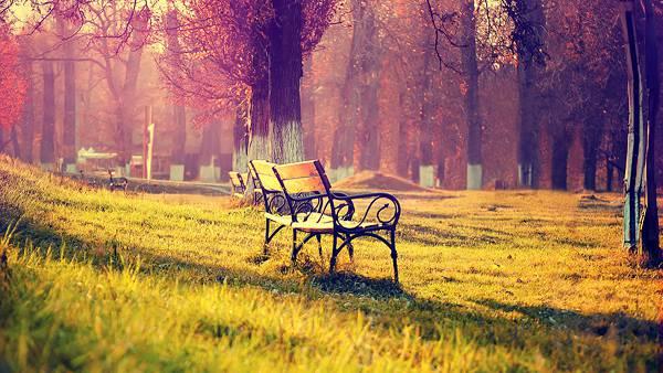 04.公園のおしゃれなベンチを撮影した鮮やかな写真壁紙画像