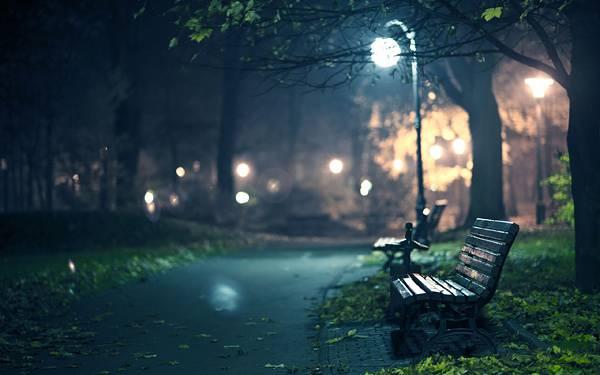 06.街灯のついた夜の公園を撮影した綺麗な写真壁紙画像