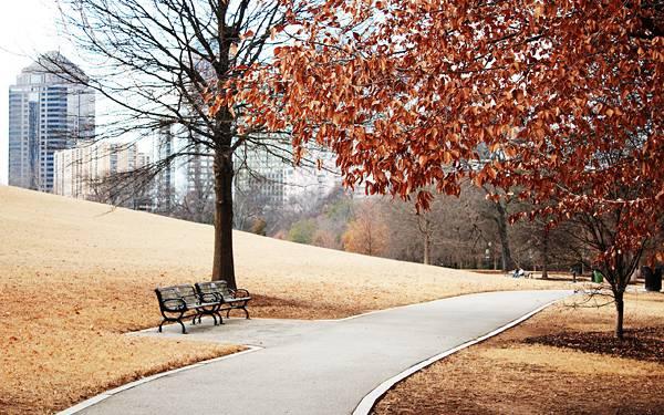 08.ビル街の中の冬の公園を撮影した綺麗な写真壁紙画像