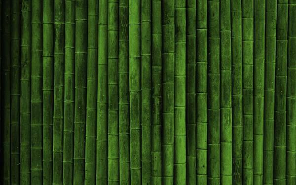 03.敷き詰められた竹のテクスチャーを撮影した写真壁紙画像