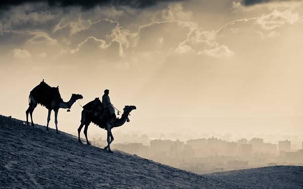 04.ラクダに乗った旅人と眼下に広がる街のカッコイイ写真壁紙画像
