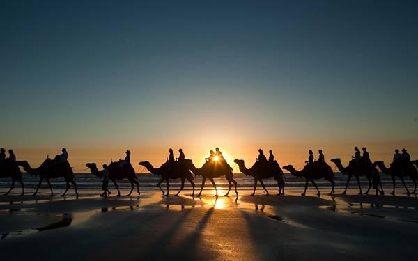 06.夕日をバックにラクダの行列のシルエットを撮影した写真壁紙画像