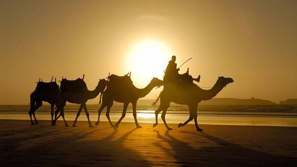 07.夕日の中のラクダ使いを撮影した綺麗な写真壁紙画像