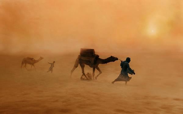 08.砂嵐の中でラクダを引っ張るラクダ使いの写真壁紙画像