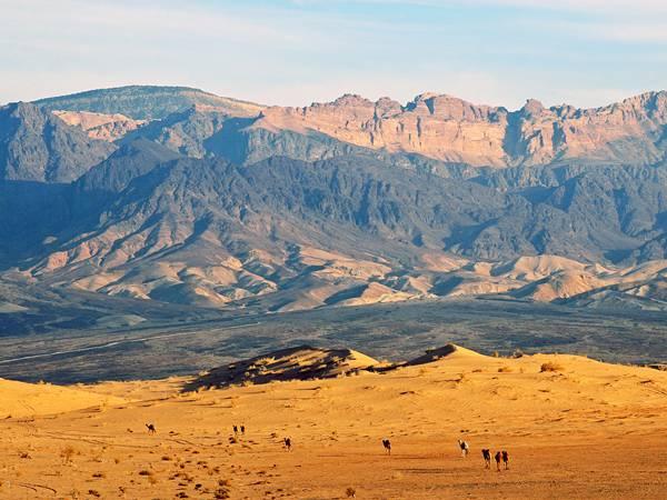 12.砂漠の中のらくだや旅人を遠くから撮影したカッコイイ写真壁紙画像