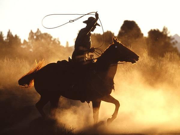 04.馬に乗ってロープを使うカウボーイを撮影した写真壁紙画像