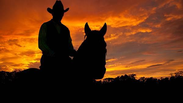 06.夕日の中の馬に乗ったカウボーイのシルエットの写真壁紙画像