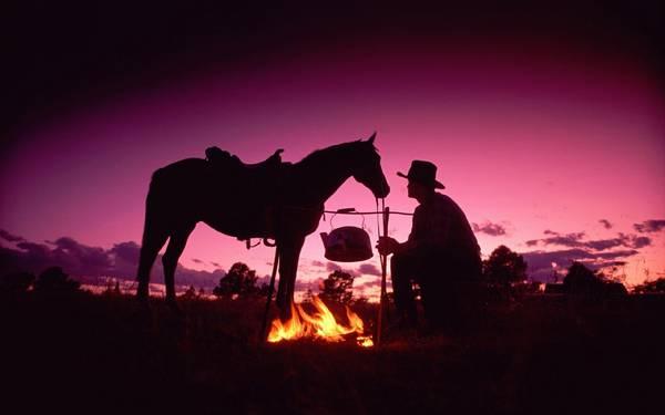 11.焚き火をして休むカウボーイと馬の綺麗な写真壁紙画像