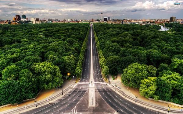 06.木々の中を街へと続く高速道路の綺麗な写真壁紙画像