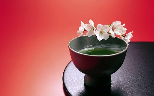03.抹茶と桜の花びらを撮影した日本的で美しい写真壁紙画像