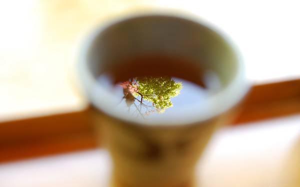 12.お茶の水面に写った景色を撮影した綺麗な写真壁紙画像