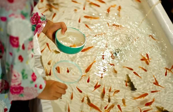 金魚すくいをする子供