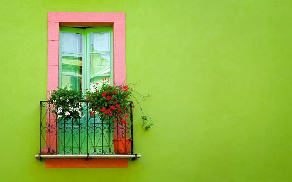 03.鮮やかな緑の壁に設置されたベランダのドアのお洒落な写真壁紙