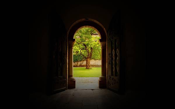 08.暗い部屋のドアから見える木を撮影した綺麗な写真壁紙画像