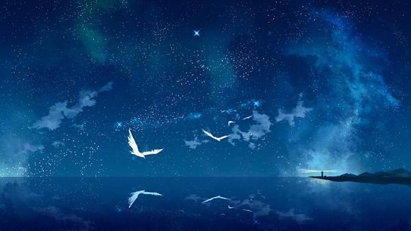 夜空の星と遠くに見える灯台と鳥達の綺麗な