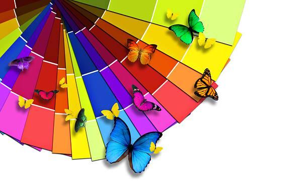 03.円状に並べたカラーカードと蝶のカラフルな壁紙画像