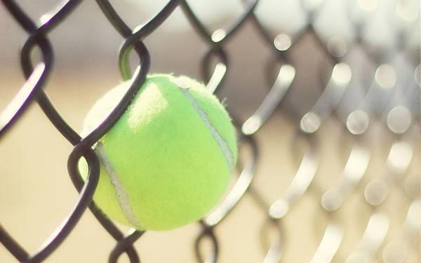 04.フェンスに挟まったテニスボールを撮影した綺麗なボケの写真壁紙