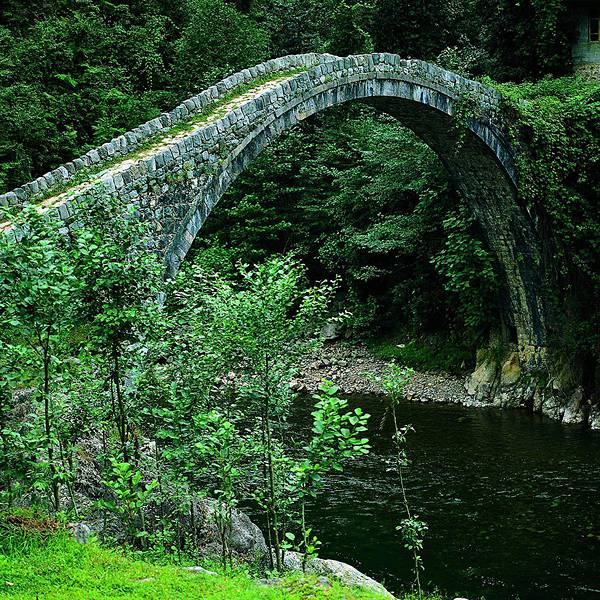 自然と完璧に調和した美しすぎる世界の橋 - 03