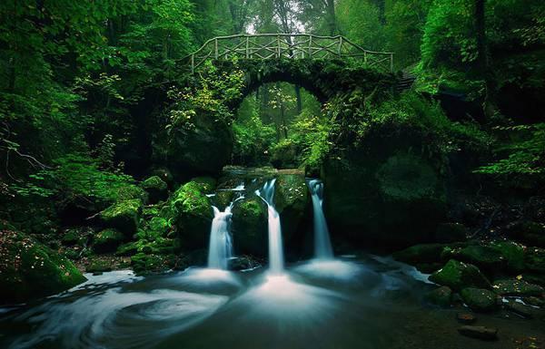 自然と完璧に調和した美しすぎる世界の橋 - 04