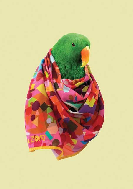 鳥にスカーフを巻かせてみたら予想以上にファッショナブル! - 01