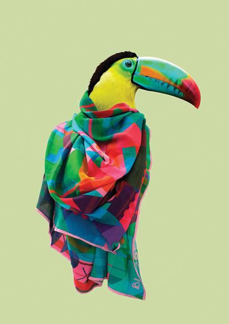 鳥にスカーフを巻かせてみたら予想以上にファッショナブル! - 03