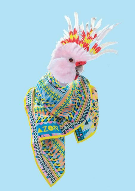 鳥にスカーフを巻かせてみたら予想以上にファッショナブル! - 07
