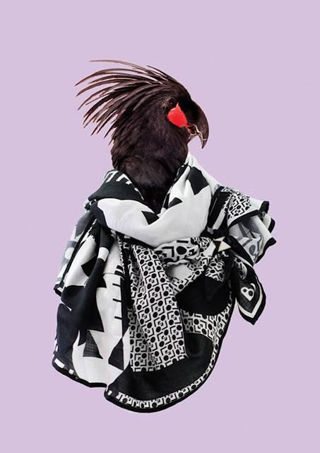 鳥にスカーフを巻かせてみたら予想以上にファッショナブル! - 10