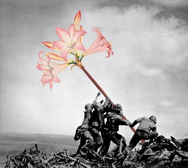 「銃を花に置き換えてみた」という美しいコラージュアート - 01