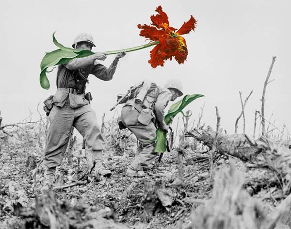 「銃を花に置き換えてみた」という美しいコラージュアート - 03
