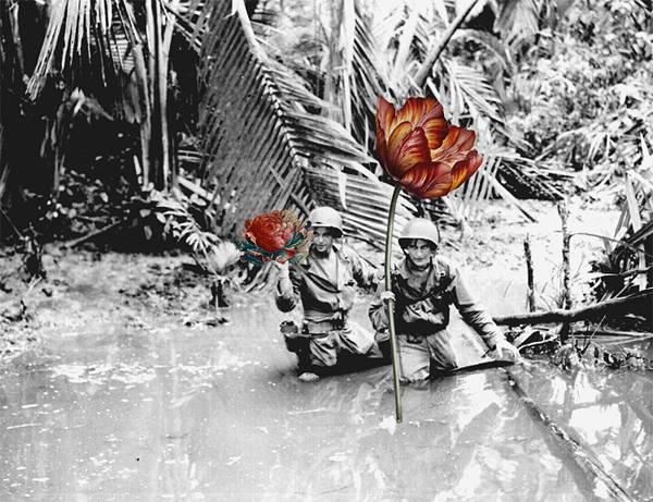 「銃を花に置き換えてみた」という美しいコラージュアート - 04