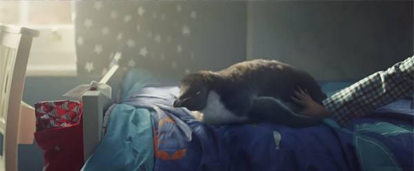 クリスマスの朝、男の子はモンティを起こします。