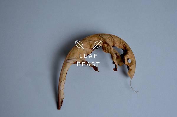 乾燥して丸まった形を活かしたアート作品「葉獣」 - 06