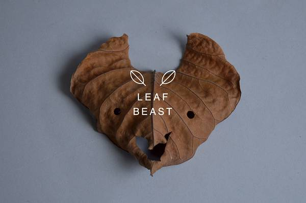 乾燥して丸まった形を活かしたアート作品「葉獣」 - 08