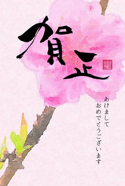 和風デザインの年賀状「賀正の筆文字と梅の花」